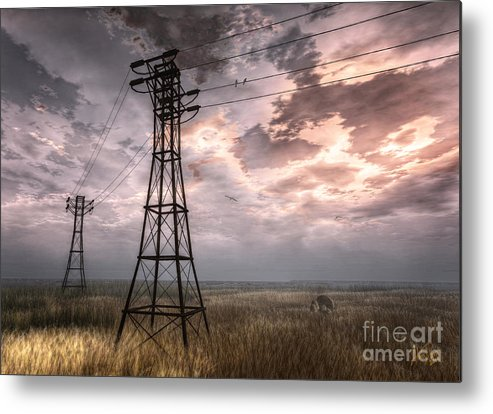 Nature Metal Print featuring the digital art Highwire by Alina Davis
