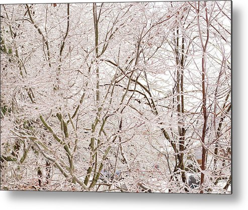 Winter Metal Print featuring the photograph Ice by Steve Kenney