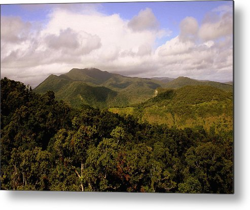 Hills Metal Print featuring the photograph Kuranda Queensland by Tony Brown