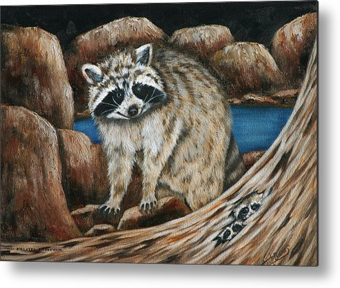 Racoon Metal Print featuring the painting Mama Racoon by Ruth Bares
