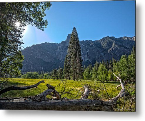 Yosemite Metal Print featuring the photograph Morning In The Meadow by Phil Abrams