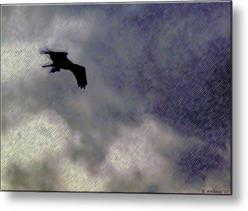 2d Metal Print featuring the photograph Osprey Silhouette by Brian Wallace