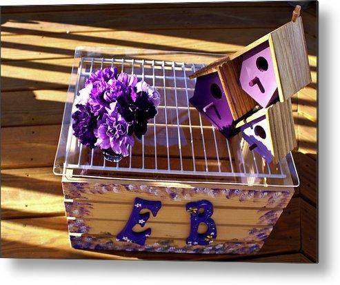 Purple Metal Print featuring the photograph Purple Birdhouses 1 by Douglas Barnett