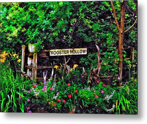 Landscape Metal Print featuring the photograph Rooster Hollow by Steve Harrington