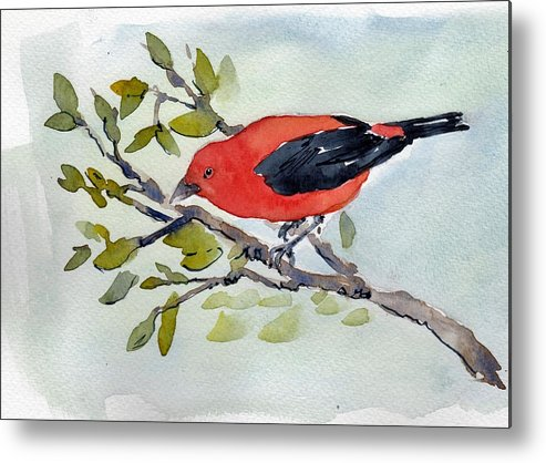 Scarlet Tanager Bird Red Black Watercolor Pen Ink Wash Metal Print featuring the painting Scarlett by Lisa Burke