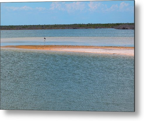 Cozumel Metal Print featuring the photograph Scenic Lagoon by Carol McCutcheon