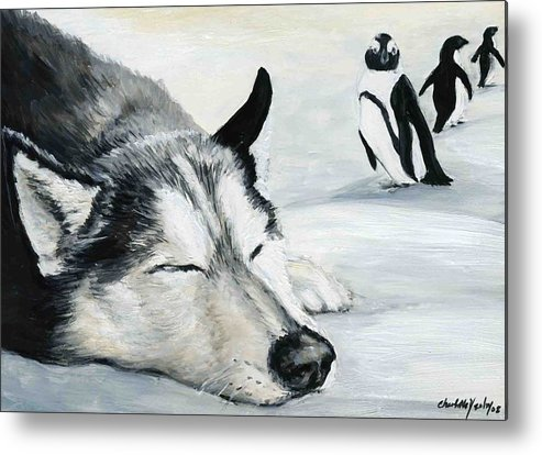 Siberian Huskey Metal Print featuring the painting Siberian Huskey by Charlotte Yealey