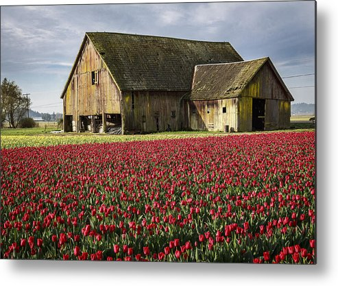 skagit Valley Metal Print featuring the photograph Skagit Barn by Eric Ewing