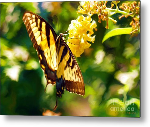Butterfly Painting Metal Print featuring the painting Swallowtail by Patricia Griffin Brett