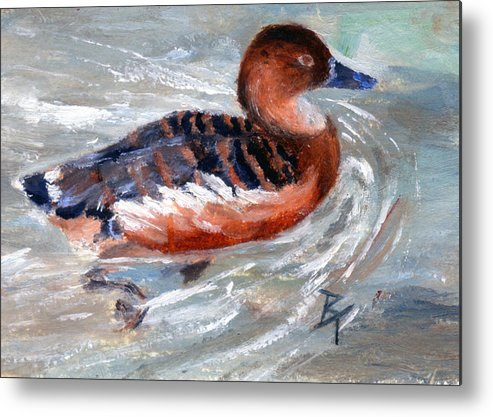 Duck Metal Print featuring the painting Swimming Aceo by Brenda Thour