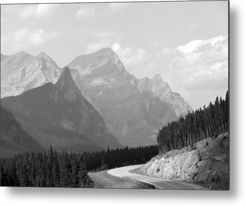 Landscape Metal Print featuring the photograph The Road Less Travelled by Tiffany Vest