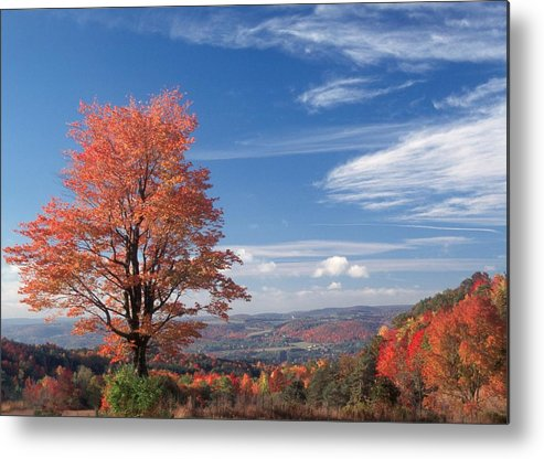 Fall Metal Print featuring the photograph Top Of The World by Raju Alagawadi