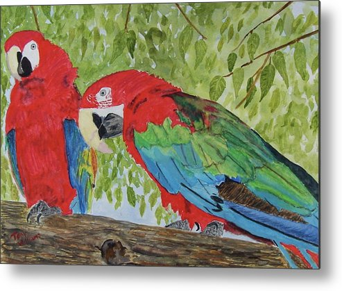 Parrots Metal Print featuring the painting Who You Looking At by Tony Williams