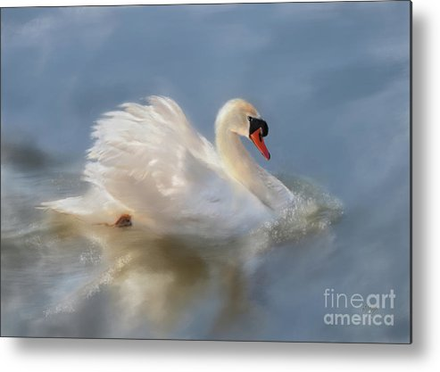 Swan Metal Print featuring the digital art Wild Beauty Painted by Lois Bryan