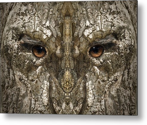 Wood Metal Print featuring the digital art Woody 100 by Rick Mosher