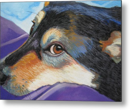 Dog Metal Print featuring the painting Zia's Look by Shirley Galbrecht