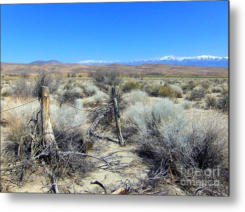 Sky Metal Print featuring the photograph Fence Line by Marilyn Diaz
