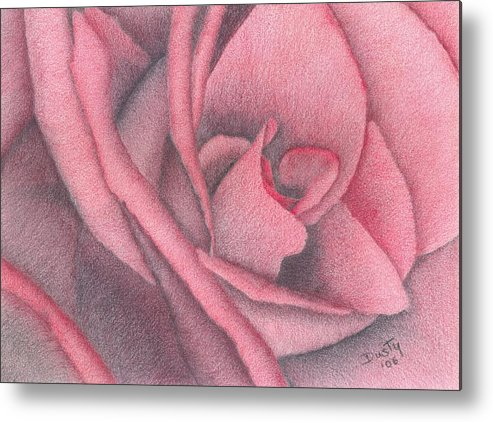 Rose Metal Print featuring the drawing Red Jewel by Dusty Reed
