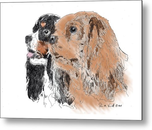 King Charles Spaniels Metal Print featuring the drawing Byrne by Shawn Vincelette