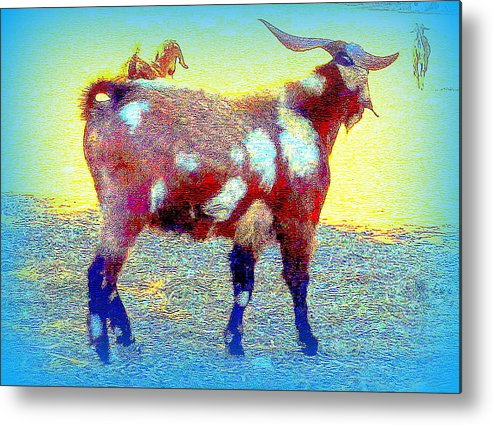 Goat Metal Print featuring the photograph Come And See The Capricorny World Before It Disappears by Hilde Widerberg