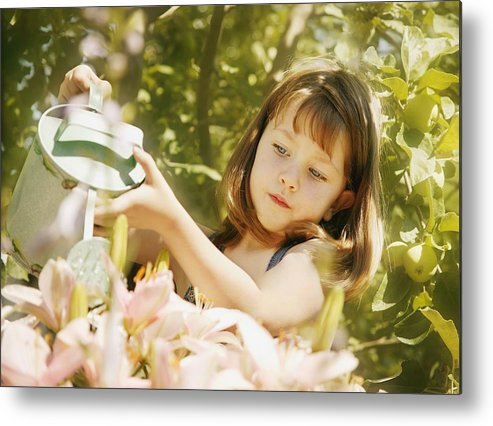 Outdoors Metal Print featuring the photograph Child Waters Flowers by Don Hammond