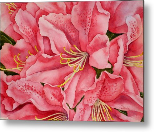 Watercolor Metal Print featuring the painting Spring Azalea by Darla Brock