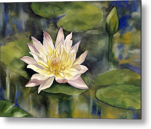 Waterlily Metal Print featuring the painting Waterlily by Alfred Ng