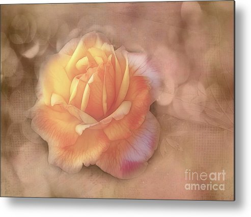 Rose Metal Print featuring the photograph Faded Memories by Judi Bagwell