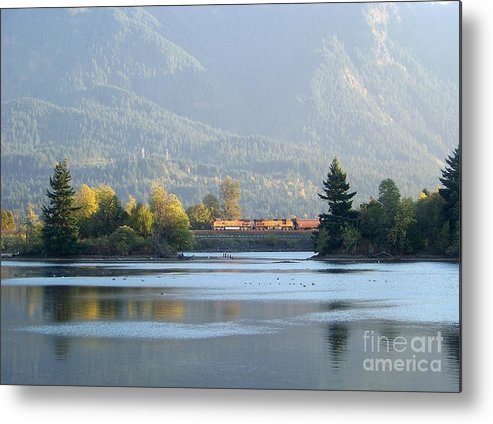 Train Metal Print featuring the photograph Island And Train by Charles Robinson