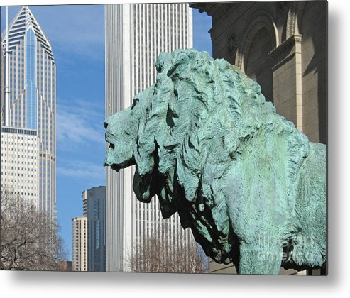 Watching Chicago By Ann Horn Metal Print featuring the photograph Watching Chicago by Ann Horn