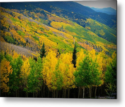 Quaking Aspen Metal Print featuring the photograph Autumn In The Rockies by Aaron Burrows