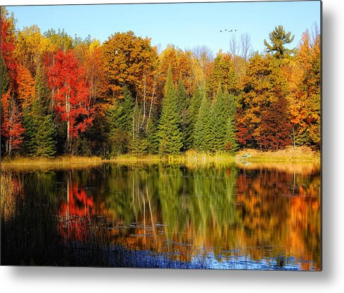 Pond Metal Print featuring the photograph Autumn Reflections by Peg Runyan