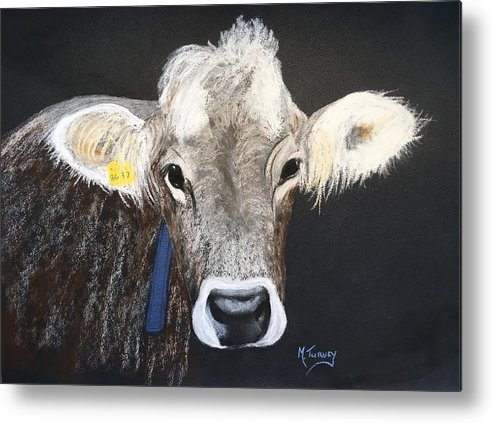 Cows Metal Print featuring the pastel Brown Swiss by Michele Turney