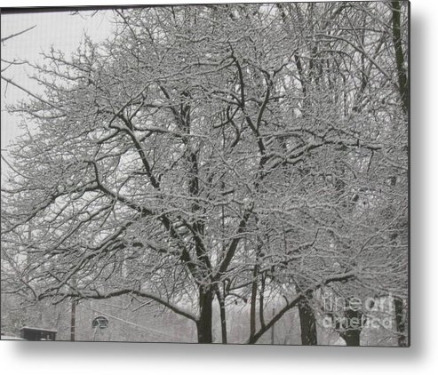 Metal Print featuring the photograph First Snowfall Of The Season by Barb Montanye Meseroll