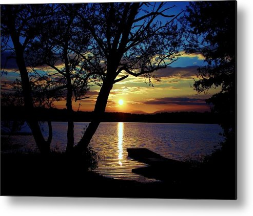 Landscape Metal Print featuring the photograph Go To Nature by Mitch Cat