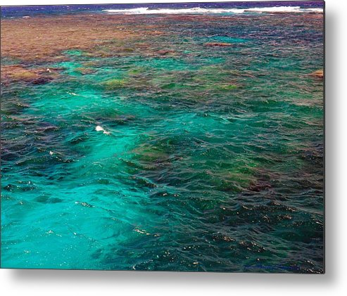 Australia Metal Print featuring the photograph Great Barrier Reef 2542 by PhotohogDesigns