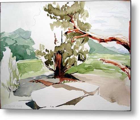 High Desert Landscape River Blue Mountains Outdoors Rural Wildlife Red Green Trees Rocks Nature Metal Print featuring the painting Kennedy Meadows Tree by Amy Bernays