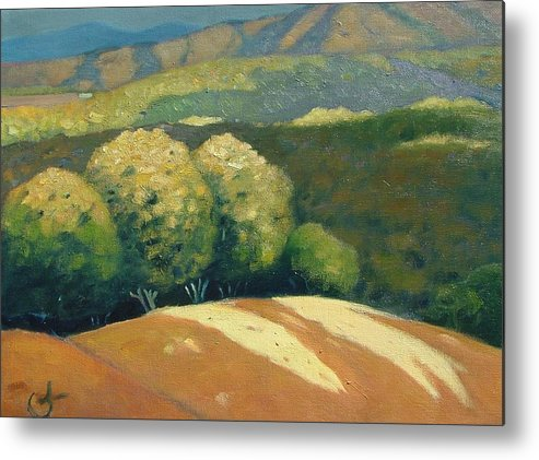 Hills Metal Print featuring the painting Last Kiss Of Sunlight by Gary Coleman