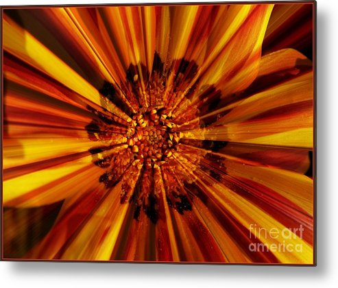 Nature Abstract Metal Print featuring the photograph Let Your Light Shine by Carol Groenen