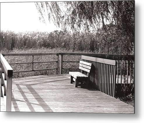 Park Metal Print featuring the photograph Look Out Point by Eric Belford