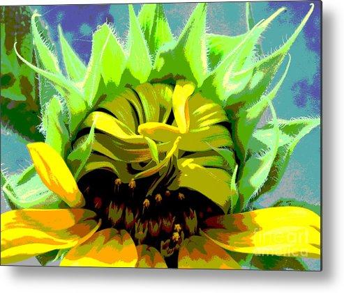 Sunflowers Metal Print featuring the photograph Morning Awakening by Lori Mellen-Pagliaro