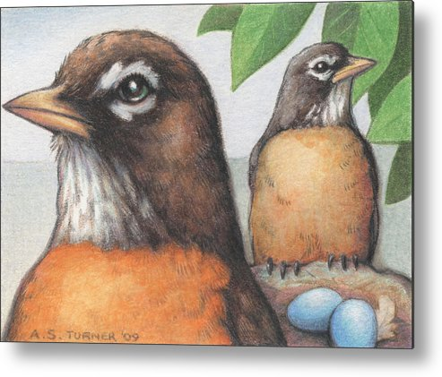 Birds Metal Print featuring the drawing Mr And Mrs Robin Are Expecting by Amy S Turner