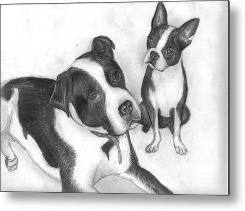 Dog Metal Print featuring the drawing Ms Proutys Dogs by Katie Alfonsi