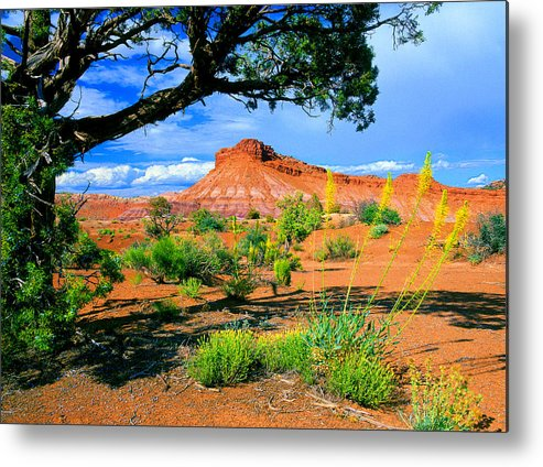 Paria Canyon Metal Print featuring the photograph Paria Wilderness by Frank Houck
