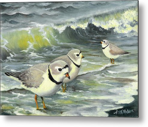 Piping Plovers Metal Print featuring the painting Piping Plovers At The Shore by Tara Milliken