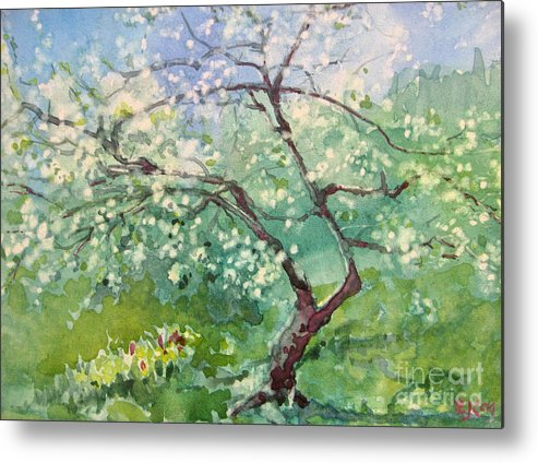 Plum Tree Metal Print featuring the painting Spring Plum by Elizabeth Carr