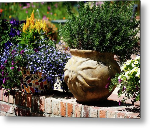 Sun Metal Print featuring the photograph Sun Pot by Marilyn Hunt