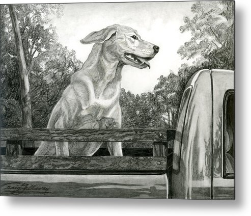 Dog Metal Print featuring the painting Truck Queen Study by Craig Gallaway