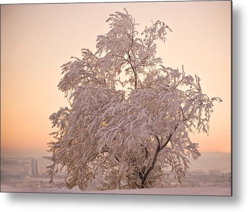 Winter Metal Print featuring the photograph Winter Sunset by Marilyn Hunt