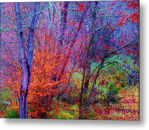 Keri West Metal Print featuring the photograph Run Forest Run by Keri West